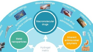 Photo of Carbohydrates and Antimicrobial Agents