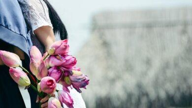 Photo of Are Tulips Romantic?