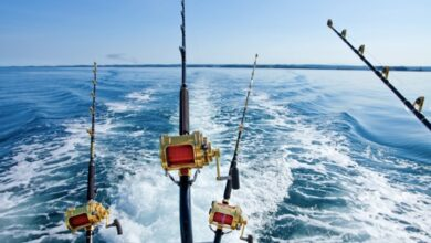 Photo of What's Considered Deep Sea Fishing? Your Complete Guide
