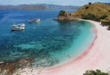 Photo of Popular in The World: Pink Beaches in Labuan Bajo